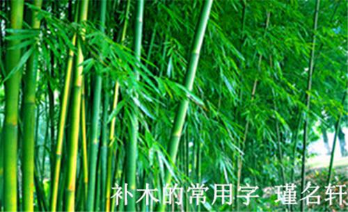 补木的常用字 中国起名实用大全