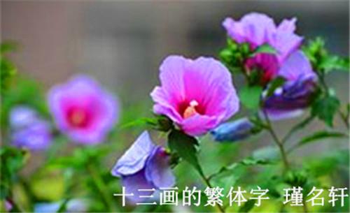 13画的繁体字 中国起名实用大全